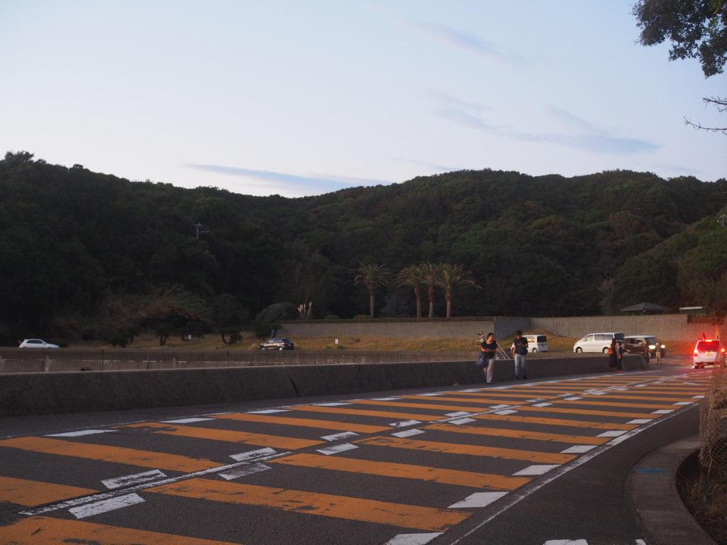 円月島park