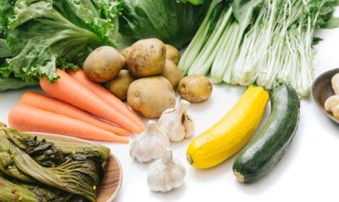 vegetable-study